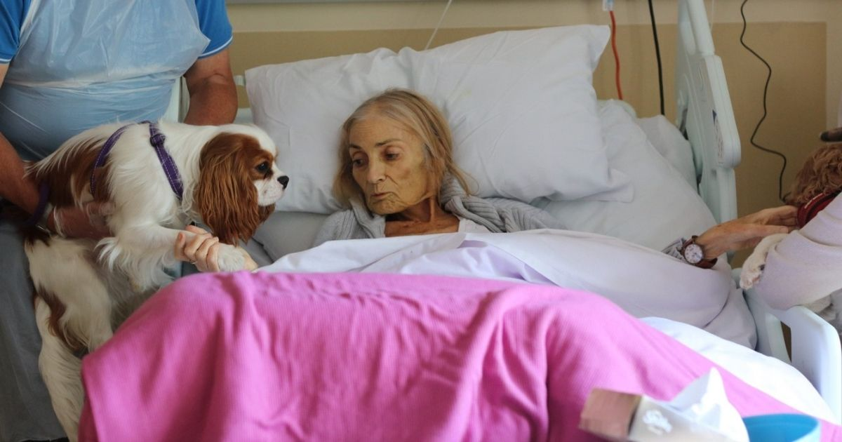 Woman Gets Dying Wish to See Pets One Last Time
